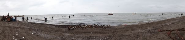 Caspian Sea - a whole team working on the catch of the day