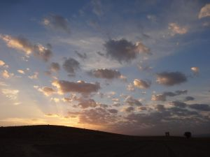 view from our campsite over the ruins at Pasargadae