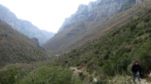 stunning Vikos gorge, unfortunately we didn't see any bears