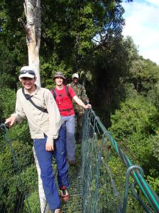 longest tree top walk in East Africa
