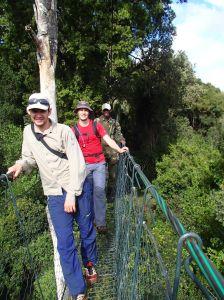 longest tree top walk in East Africa