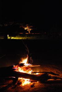 view of the waterhole from the campsire at night (Tsavo East)